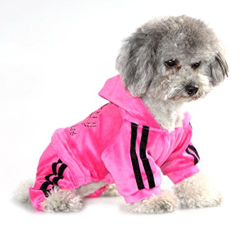 PEGASUS Pet Clothes for Puppy Cat Small Dog Soft Velvet Crown Jumpsuit Coat Hooide Pajamas Tracksuit Pink XS (Yorkie Terrier Clothes compare prices)