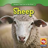 img - for Sheep (Animals That Live on the Farm) book / textbook / text book