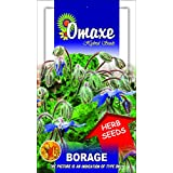 Omaxe Borage Imported Herb - 20 Seeds Pack Herb Seeds
