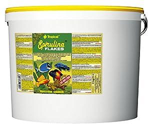 Tropical Spirulina Flakes Pflanzliches Flockenfutter mit Spirulina, 1er Pack (1 x 11 l)