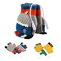 Dealpeak Cold Weather Winter Wool Knit Gloves USB Heated Warmer Gloves for Women Men Best Winter Gift Choice (GS53),Red,Blue, Gray, Free Size