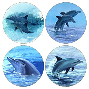 Coasterstone as2030 absorbent coasters 4 1 4 for Best coasters for sweaty drinks