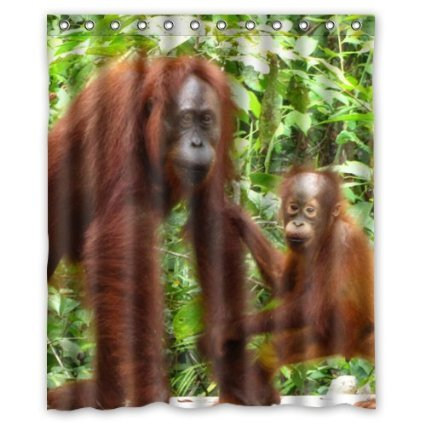 Mother and baby orangutan Shower Curtain 60 x 72 Inch Bathroom