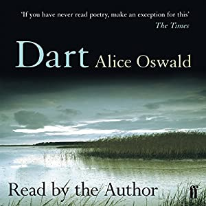Dart Audiobook