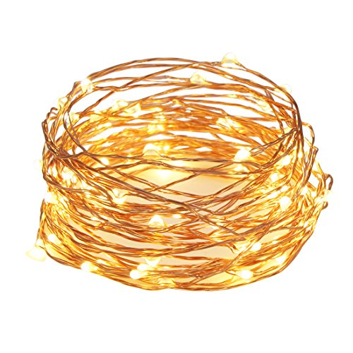 Kootek 33ft 100 LEDs Fairy String Lights with Remote Control Dimmable Copper Wire Rope Lights, UL Certified Christmas Lights for Patio, Garden, Homes, Holiday, Party, Indoor, Wedding Decorations