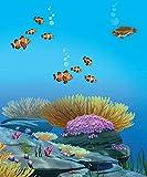Image de H2O - Abenteuer Meerjungfrau Freundebuch: Meine Freunde