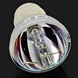 PLM High Quality BL-FP230I / SP.8KZ01GC01 Bare Bulb Lamp Compatible for Projector OPTOMA HD300X HD33 HD3300