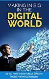 img - for Making It Big in the Digital World: All you need to know about Effective Digital Marketing Strategies book / textbook / text book