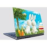 Laptop Skin 40