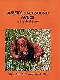 Amber's Dachshund Antics