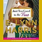 Just Too Good to Be True: A Novel | E. Lynn Harris