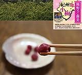 無農薬 しそ漬小梅 1kg 熊野のご褒美 無添加 和歌山産 無化学肥料 梅干し