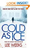 Cold as Ice (Dc Ebony Willis 2)