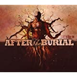 "Rareformvon ""After the Burial"""