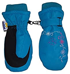 N\'Ice Caps Girls Thinsulate and Waterproof Colorful Floral Embroidered Mittens (2-3yrs, Turquoise)