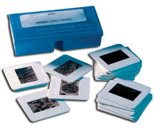 Hubbard Scientific Cell Electron Micrograph Slides - Animal (Set Of 20)