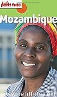 Petit Futé Mozambique