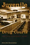 Juvenile Drug Courts and Teen Substance Abuse (Urban Institute Press)