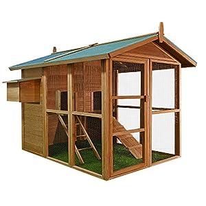 Poulailler en bois 195 x 163 x 173 cm enclos poulet volaille avec compartiments ponte