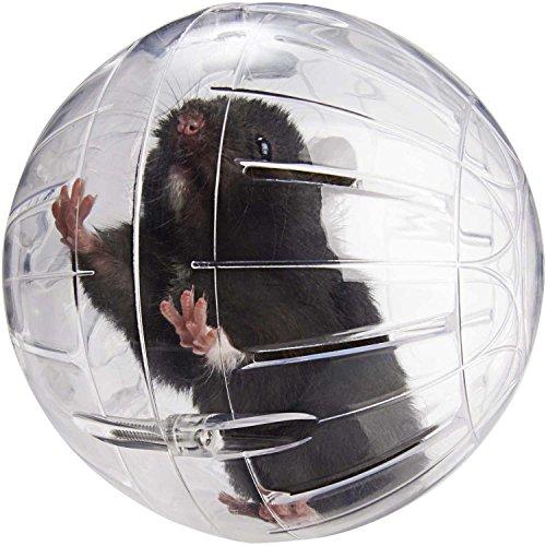 Lee's Kritter Krawler Small Animal Ball 51xbi2CYfbL