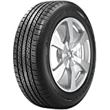BFGoodrich Advantage T/A All-Season Radial Tire - 205/65R15 94T