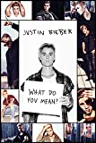 Justin Bieber- What Do You Mean Collage Poster 24 x 36in