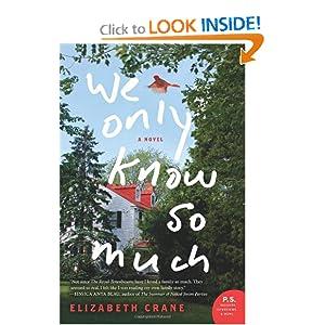 A Novel (P.S.) - Elizabeth Crane
