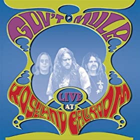 Cover image of song Temporary Saint by Gov't Mule