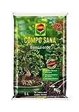 COMPO SANA® Bonsaierde, hochwertige Spezialerde für alle...