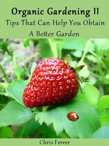Organic Gardening II: Tips That Can Help You
