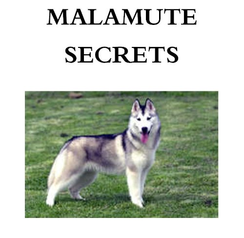 Free Kindle Book : Malamute Secrets: How to Raise Happy and Healthy Alaskan Malamute Dogs