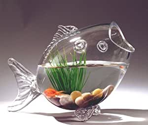 Buy fish shaped glass fish bowl aquarium large online at for Fish bowl amazon