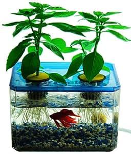 JrPonics FishGarden & BubbleGarden - Aquaponics/Hydroponics Gardening Kit for Kids - Educational Aquarium Habitat - Grow Plants with Fish!