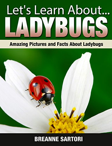 Free Kindle Book : Ladybugs : Amazing Pictures and Facts About Ladybugs (Let