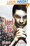 Angel in the Ice, Book 3 (The Angel Series)