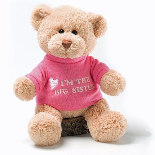 Gund I'm The Big Sister Message 12