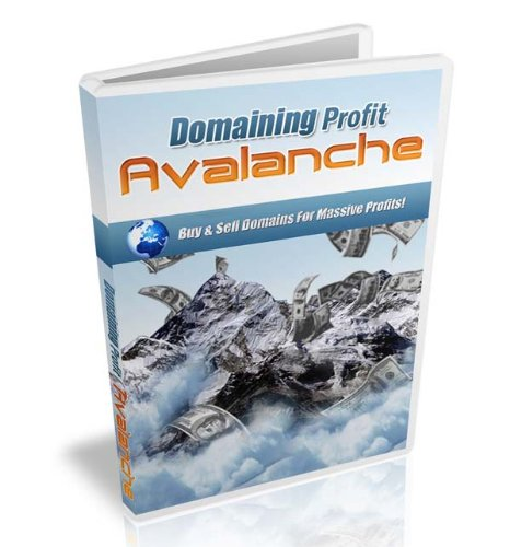 Domain Profits Video Training On CD + Big Bonus