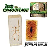 Real Insect: Camouflague Science Kit - Includes Genuine Scorpion and Stick Insect!by Discover with Dr. Cool