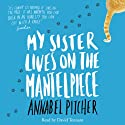 My Sister Lives on the Mantelpiece (       UNABRIDGED) by Annabel Pitcher Narrated by David Tennant