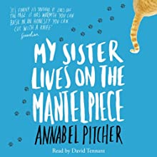 My Sister Lives on the Mantelpiece Audiobook by Annabel Pitcher Narrated by David Tennant