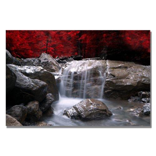 trademark-fine-art-red-vison-by-philippe-sainte-laudy-canvas-wall-art-22x32-inch