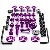 Aluminium Fairing Kit Suzuki TL1000R Purple