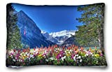"Generic Baby Girls Landscapes lake louise canadian rockies banff national park alberta canada lake Banff Alberta Canada Flowers Trees Mountains 20""X30"""