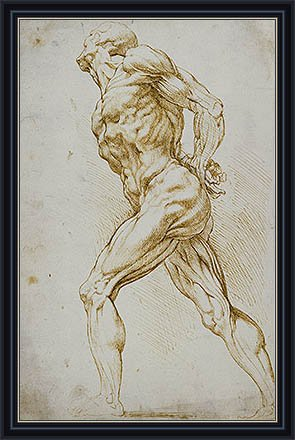 """Rubens (Anatomical Study (A Nude Striding to the Right), undated) Print on Fine Art Paper Reproduction Framed with 2.6"""" wide Black Frame and Gold Edge (20.1x12.8 in) (51x33 cm)"""