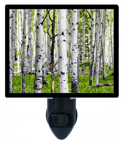 Birch Trees Night Light - Forest And Woods Led Night Light