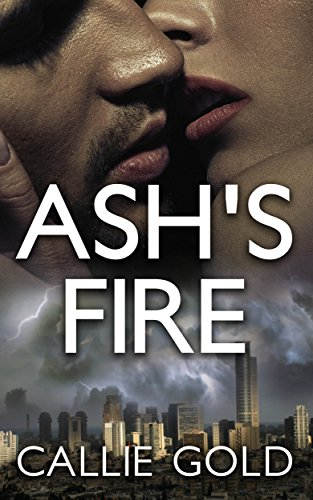 Ash's Fire: Contemporary Romantic Mystery (The Ash Trilogy Book 1)