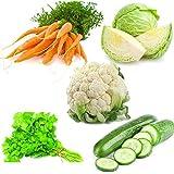 Carrot Nantes, Cabbage, Cauliflower, Coriander And Cucumber Beit Alpha (5pkts/40+ Seeds) By Seedscare India