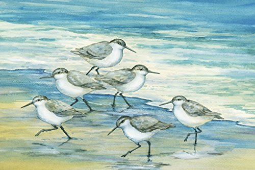 Portfolio-Canvas-Dcor-Surfside-Sandpipers-by-Paul-Brent-24x36x15-1-Piece-Canvas-Wall-Art
