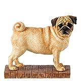 BFA Dogs Pug