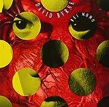 Rei Momo by David Byrne (1989-10-10)